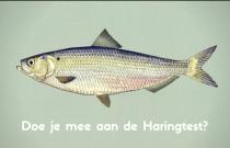Plaatje van een haring ter illustratie van de Haringtest, een online quiz over haring of Hollandse Nieuwe.